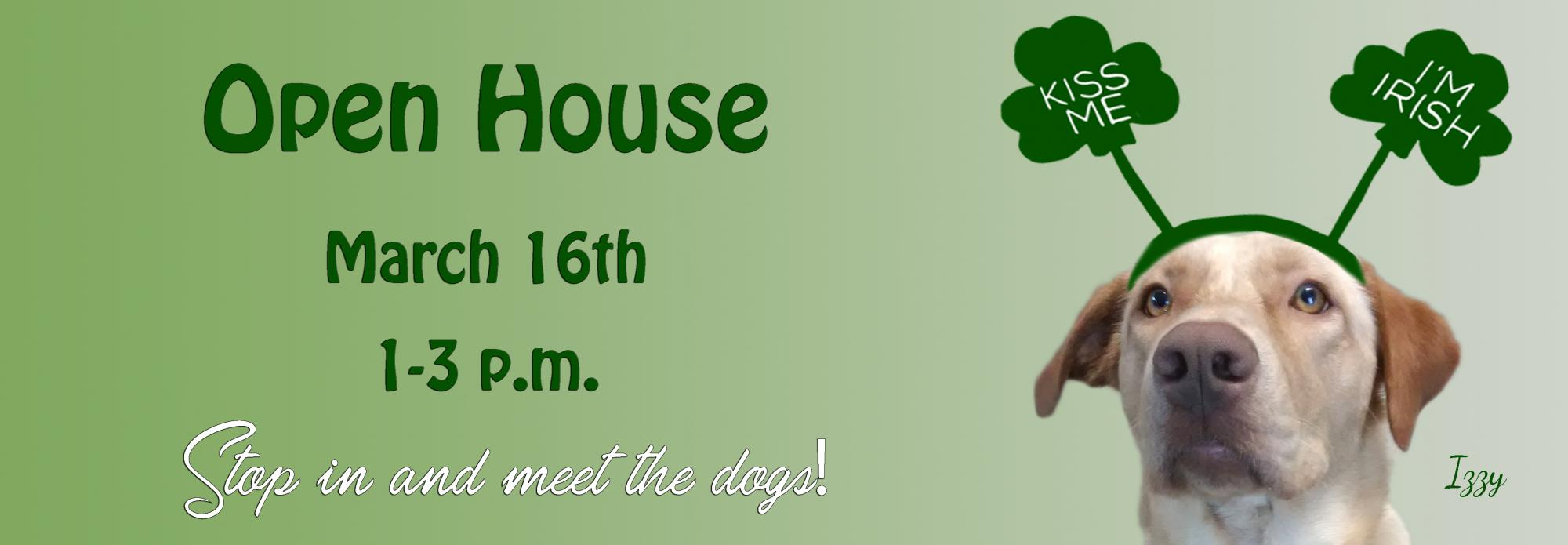 Adoption Day Open House Northern Chautauqua Canine Rescue Westfield New York
