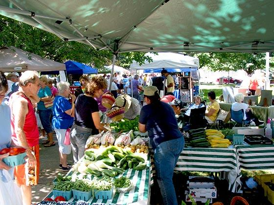 Beautiful day at the Westfield NY Farmers's Market