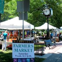 Westfield NY Farmers Market in Moore Park every Saturday