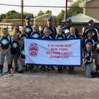 2018 Little League State Tournament Team